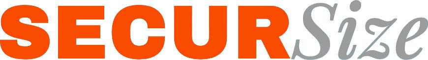 Logo SECURSize